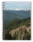 Hurricane Ridge View Spiral Notebook