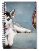 Husky Puppy II Spiral Notebook