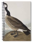 Hutchins's Barnacle Goose Spiral Notebook