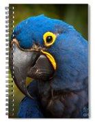Hyacinth 363 Crop Spiral Notebook
