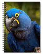 Hyacinth 363 Spiral Notebook