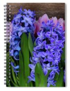 Hyacinths And Tulips II Spiral Notebook
