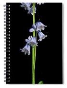 Hyancinth Spiral Notebook