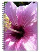 Hybiscus Smile Spiral Notebook