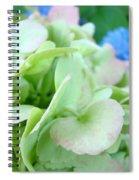 Hydrangea Flowers Art Prints Floral Gardens Gliclee Baslee Troutman Spiral Notebook