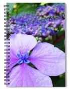 Hydrangea Flowers Art Prints Hydrangea Garden Giclee Art Prints Baslee Troutman Spiral Notebook