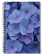 Hydrangea Flowers Spiral Notebook