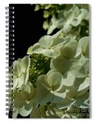 Hydrangea Formal Study Portrait Spiral Notebook
