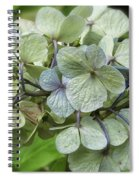 Hydrangea  In Purple And Pale Yellow Spiral Notebook