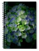 Hydrangea - Flowers Spiral Notebook