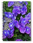 Hydrangea, Macrophylla Teller Spiral Notebook
