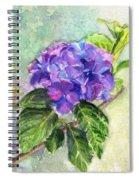 Hydrangea On Clayboard Spiral Notebook