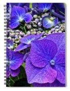 Hydrangea Plant Spiral Notebook