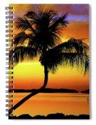 Hypnotic Spiral Notebook