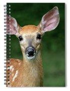 I Am All Ears Spiral Notebook
