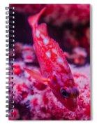 I Am Sooo Hot Pink Spiral Notebook