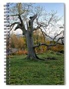 I Am Such A Tree. Spiral Notebook