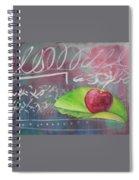 I Cannot Tell A Lie Spiral Notebook