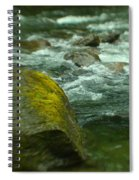 I Dreamed Of The River Spiral Notebook