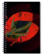 I Have Many Faces Number Five Spiral Notebook