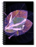 I Have Many Faces Number Six Spiral Notebook