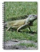 I Iguana Spiral Notebook