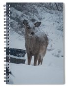 I Love Snow Spiral Notebook