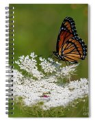 I Love Summer.. Spiral Notebook