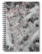 I Love Winter Spiral Notebook