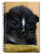 I Miss You Kitty Spiral Notebook
