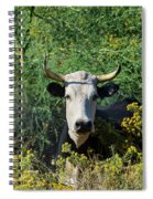 I Picked These For Moo Spiral Notebook