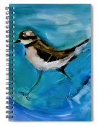 I See You Said The Killdeer As She Passed By Spiral Notebook