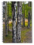 I See You - The Aspens Spiral Notebook