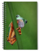 I See You - Tiger Leg Monkey Frog Spiral Notebook