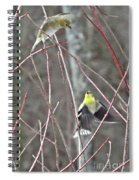 I See You Two Birds In Flight Spiral Notebook