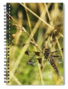 I Spy A Dragonfly Spiral Notebook