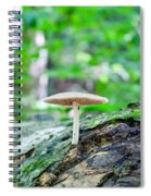 I Stand Alone Spiral Notebook