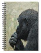 I  Wonder Spiral Notebook