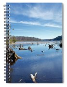 Iago Springs 9500 Spiral Notebook