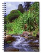Maui Hawaii Iao Valley State Park Spiral Notebook