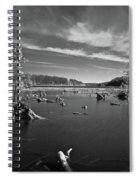 Iargo Springs 9502 Spiral Notebook