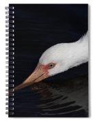 Ibis Drinking Spiral Notebook