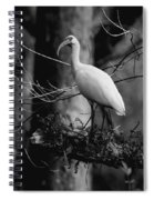 Ibis In Black And White  Spiral Notebook