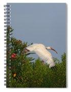 Ibis In The Oleander Spiral Notebook