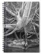 Twisted Roots  Spiral Notebook