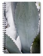 Ice Blue Agave Spiral Notebook