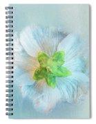 Ice Blue Under Spiral Notebook