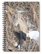 Ice Cold Heron Spiral Notebook