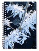 Ice Crystal Spiral Notebook