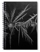 Ice Crystals ... Spiral Notebook